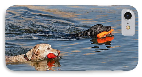 Labrador Retrievers In Pond IPhone Case