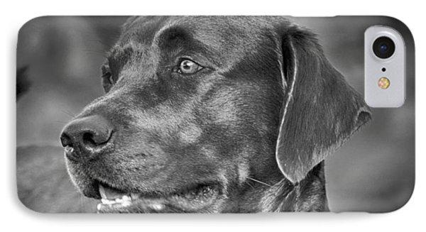 Labrador Sweetie IPhone Case