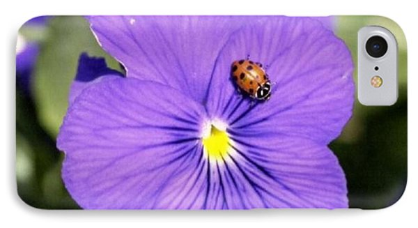 Ladybug On Flower IPhone Case