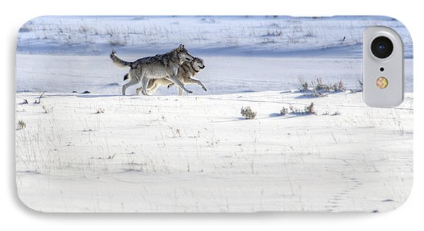 Lamar Canyon Wolves IPhone Case