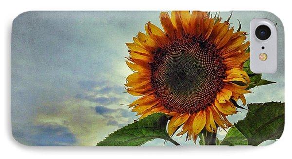 Late August Sun IPhone Case
