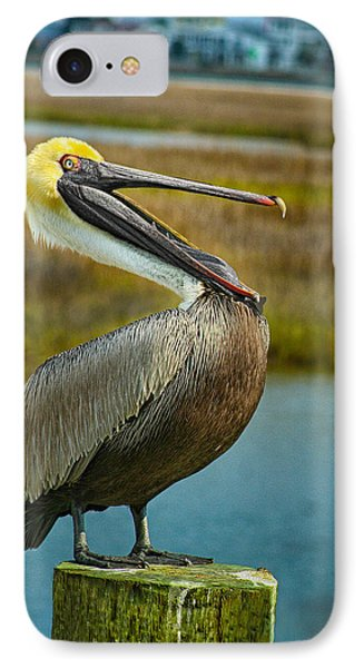 Laughing Pelican IPhone Case