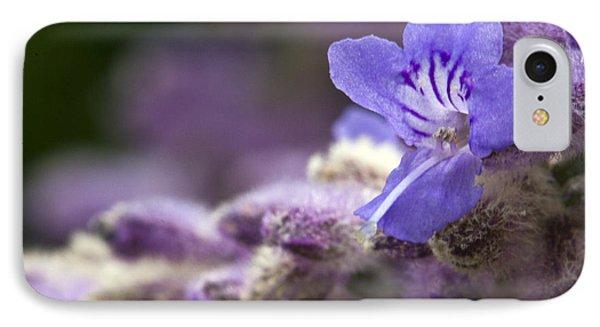 Lavender Beauty IPhone Case