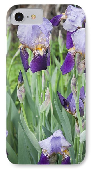 Lavender Iris Group IPhone Case