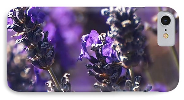 Lavender Stems IPhone Case