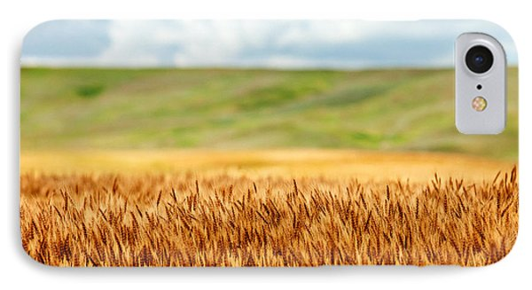 Layers Of Grain IPhone Case