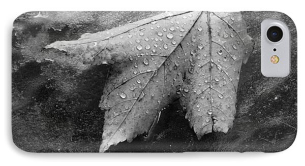 Leaf On Glass IPhone Case