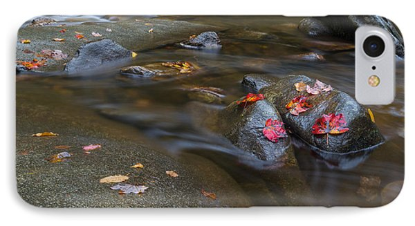 Leaves On The River Path IPhone Case