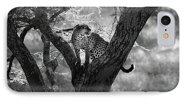 Africa iPhone 8 Case - Leopard by Bjorn Persson