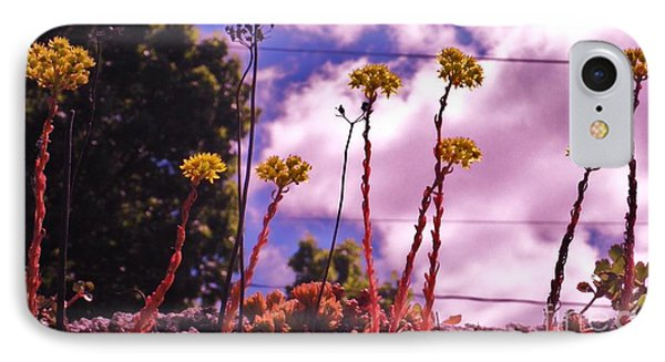 Lichen On A Roof IPhone Case