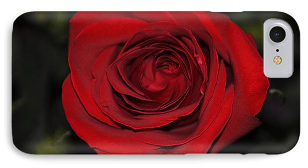 Like A Red Rose IPhone Case