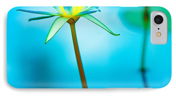 Lily iPhone 8 Case - Lily In Blue by Bill  Robinson