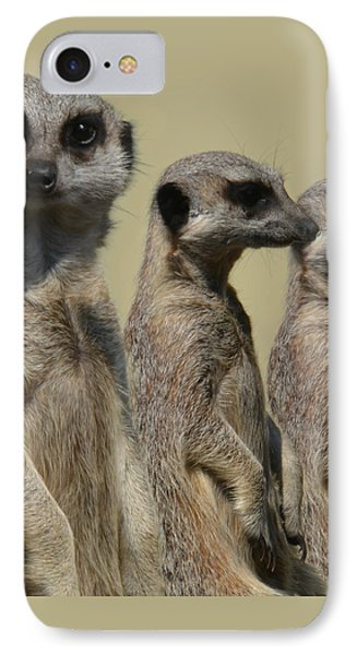 Line Dancing Meerkats IPhone Case