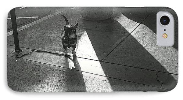 Little Dog Big Shadow IPhone Case