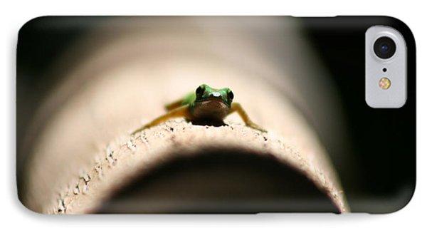 Lizard On A Log IPhone Case