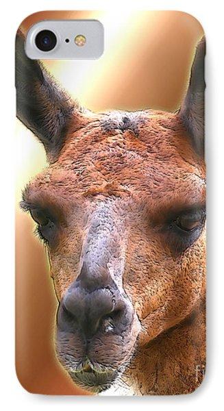 Llama Face IPhone Case