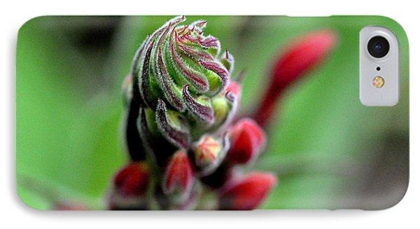 Lobelia Tupa Flower   IPhone Case