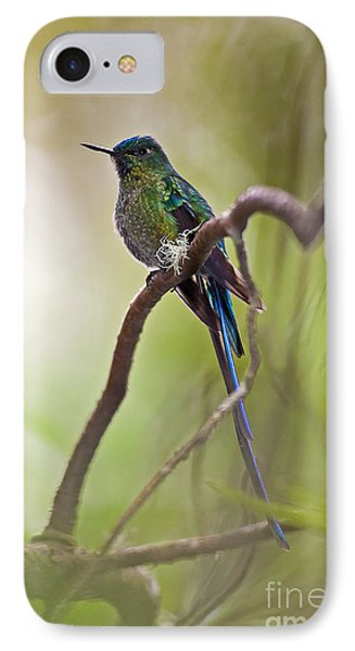 Long-tailed Sylph IPhone Case