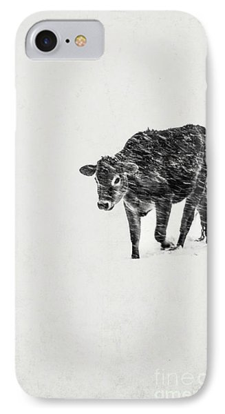 Lost Calf Struggling In A Snow Storm IPhone Case
