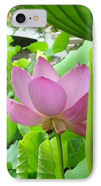 Lotus And Bridge IPhone Case