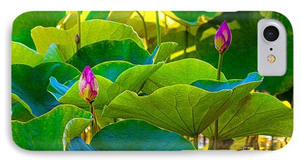 Lotus Garden IPhone Case