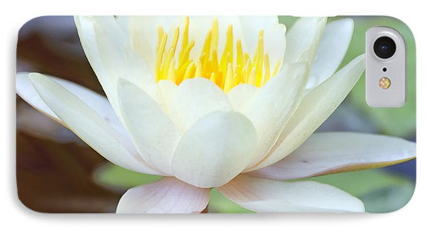Lotus Flower 02 IPhone Case