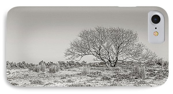 Love The Trees Until Their Leaves Fall Off Then Encourage Them To Try Again Next Year. IPhone Case