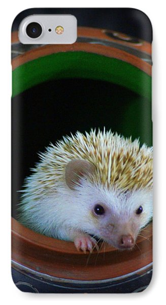 Lyla The Hedgehog IPhone Case