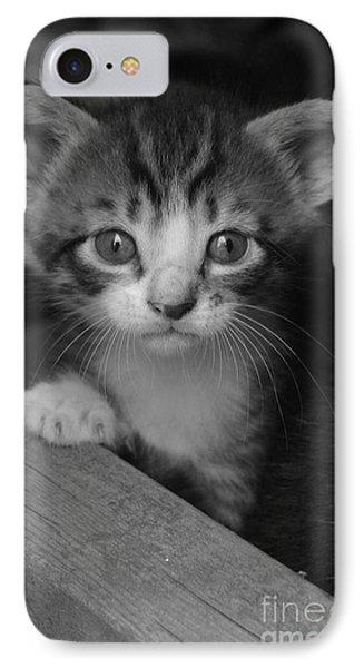 M Kitten IPhone Case