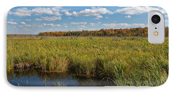Magnificent Minnesota Marshland IPhone Case
