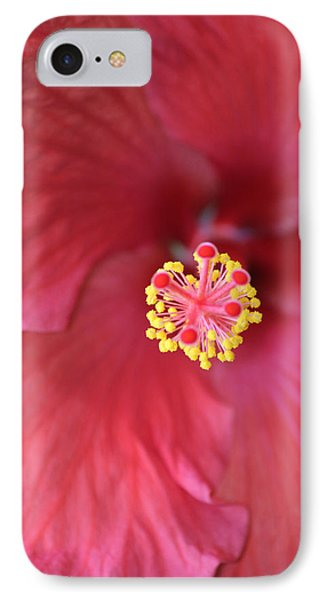 Magnolia 5  IPhone Case