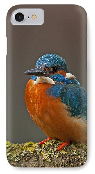 Male Kingfisher IPhone Case