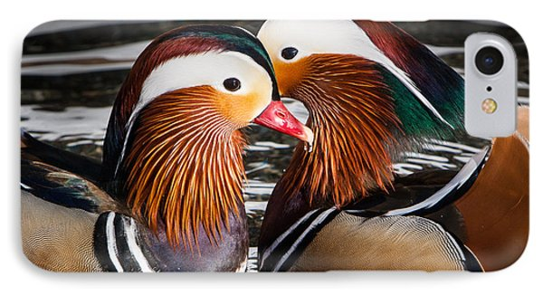 Mandarin Lovers IPhone Case