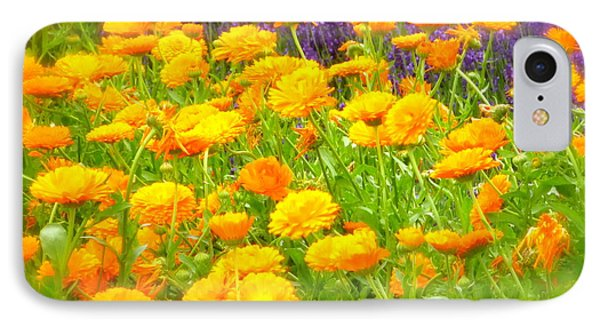 Marigolds And Lavender IPhone Case
