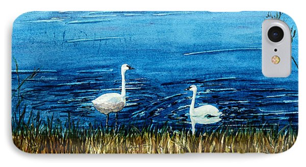 Marion Lake Swans IPhone Case