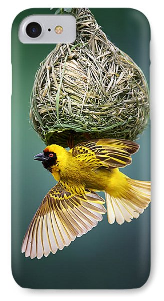 Africa iPhone 8 Case - Masked Weaver At Nest by Johan Swanepoel