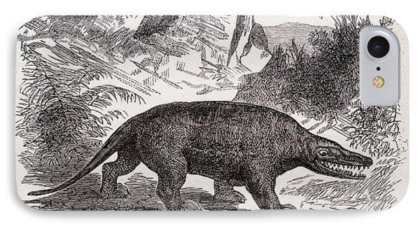 Megalosaurus Dinosaur IPhone Case