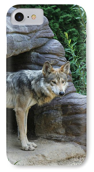 Mexican Wolf #2 IPhone Case