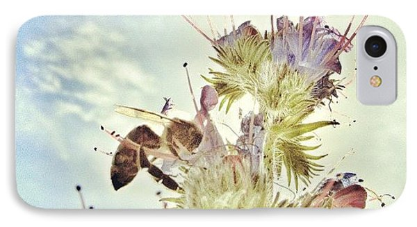 #mgmarts #flower #spring #summer #bee IPhone Case