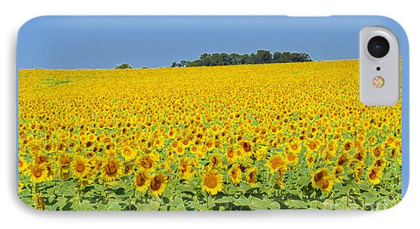 Millions Of Sunflowers IPhone Case