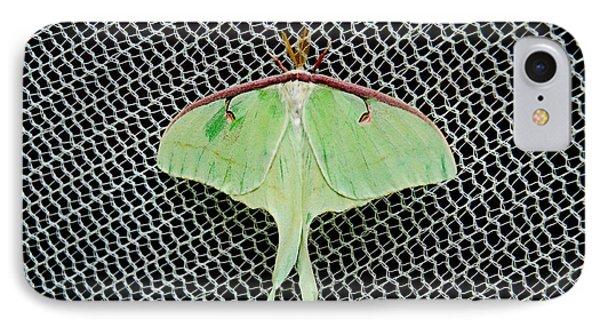 Mint Green Luna Moth IPhone Case