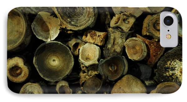 Miocene Fossil Vertebrae Collection IPhone Case