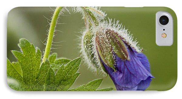 Morning Cranesbill  IPhone Case