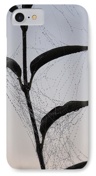 Morning Dew On Spiderweb IPhone Case