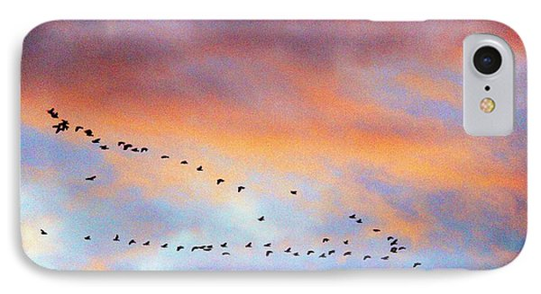 Morning Geese IPhone Case
