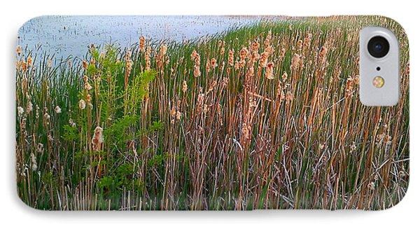 Moss Landing Washington North Carolina IPhone Case