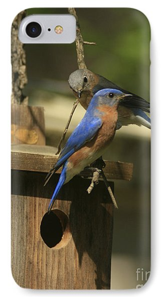 Mr. And Mrs. Bluebird IPhone Case