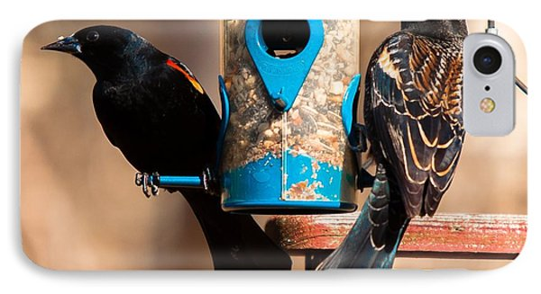 Mr. And Mrs. Red Winged Blackbird IPhone Case
