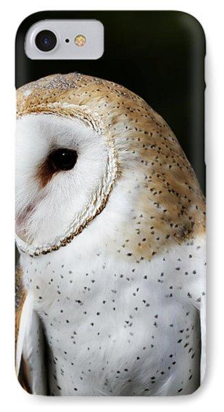Mr Owl  IPhone Case