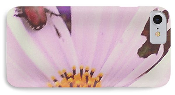 Muching On Beauty IPhone Case